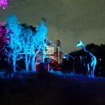夜の動物園ってどんなところ? in天王寺動物園