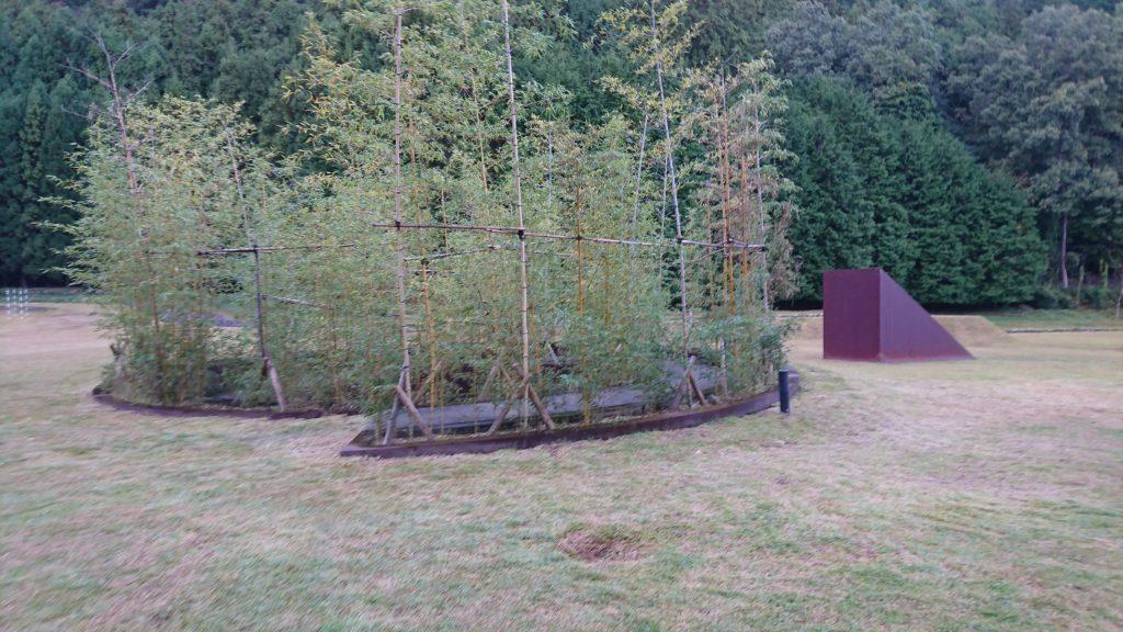 螺旋の竹林